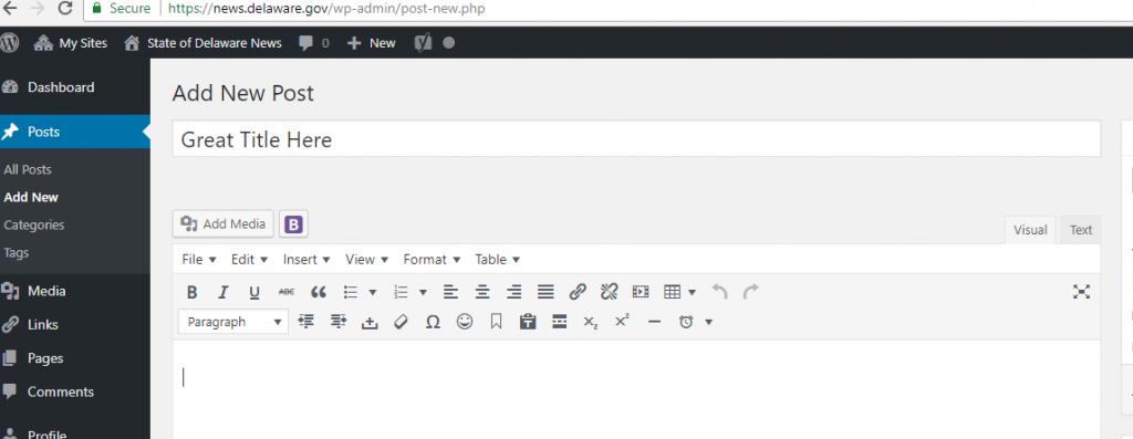 Screenshot of adding a title in a WordPress site
