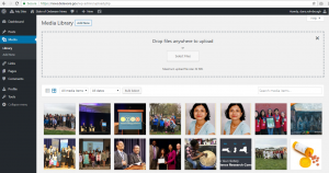 Screenshot of the WordPress media gallery