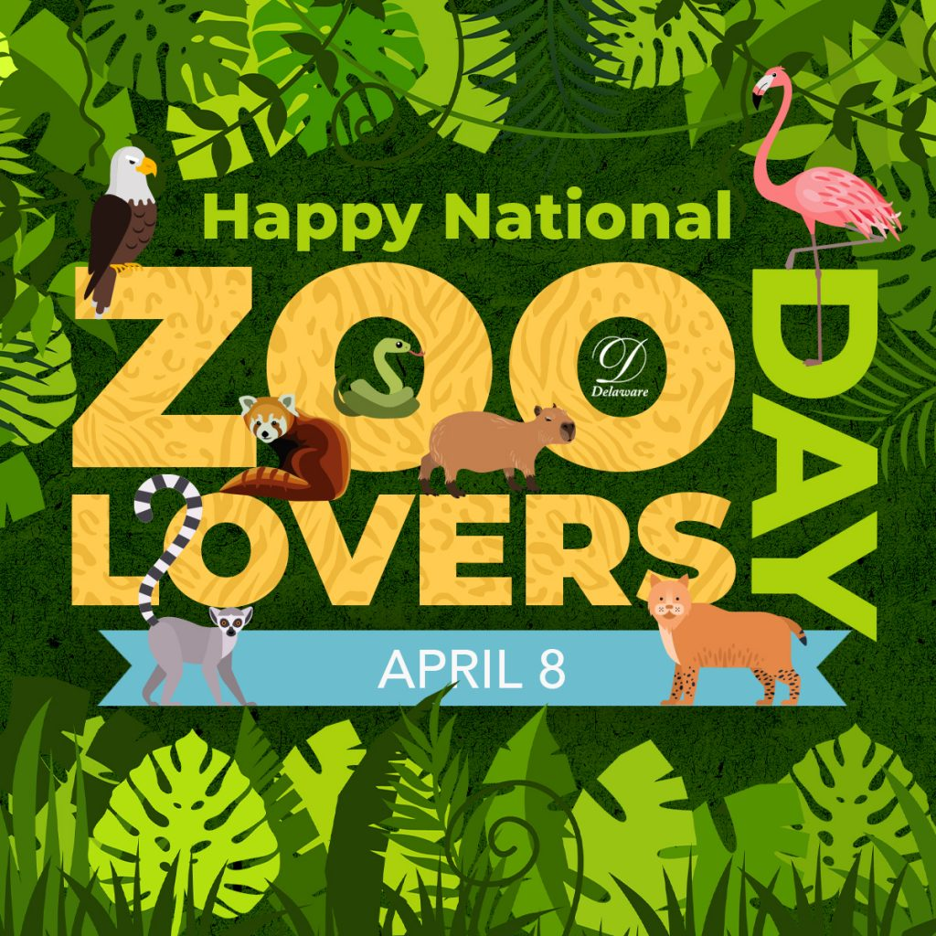 International Zoo Lovers Day Social Graphic