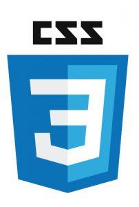 CSS 3 Shield Logo