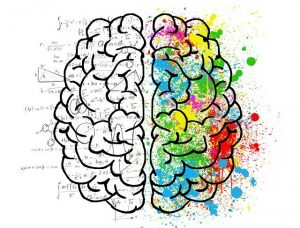 Illustrative drawing of an artistic brain. The right side is has colorful paint splatters.